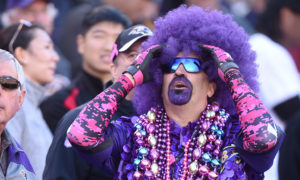 BALTIMORE, MD - OCTOBER 09:  A Baltimore Ravens reacts to play during a football game against the Washington Redskins at M&T Bank Stadium on October 9, 2016 in Baltimore, Maryland.  (Photo by Mitchell Layton/Getty Images)